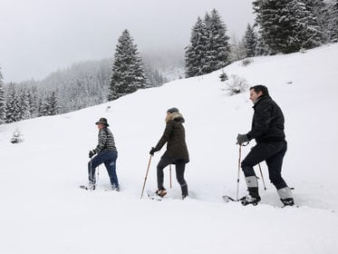 Snowshoeing in the Grossarl valley
